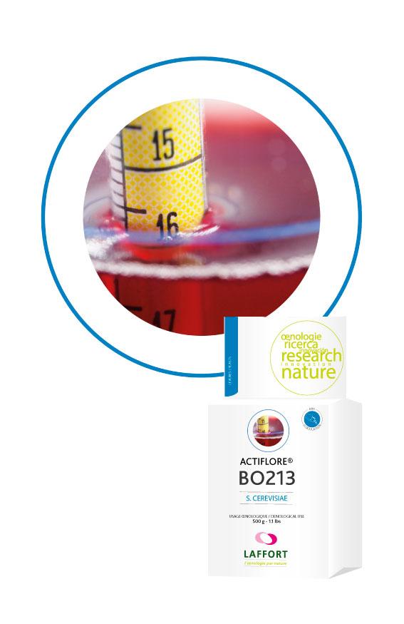 ACTIFLORE® BO213 1